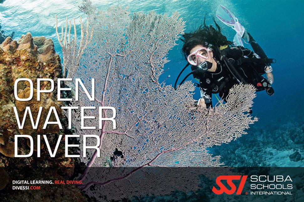 befree2dive_plongee_ssi_open-water