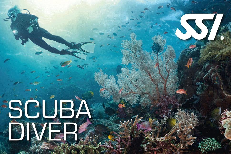 befree2dive_plongee_ssi_scuba-diver