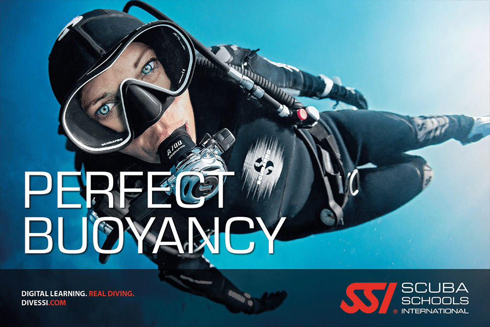 befree2dive_plongee_ssi_spe_perfect