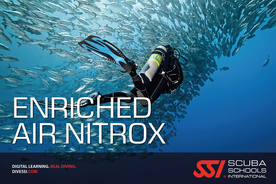 befree2dive_plongee_ssi_spe_enriched